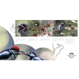 NEDERLAND NVPH FDC E 811 AB VOGELS BIRDS
