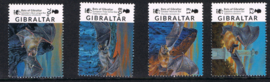 GIBRALTAR 2017 VLEERMUIS BAT