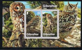GIBRALTAR 2020 VOGEL BIRD UIL OWL