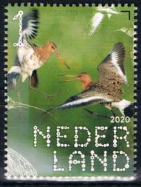 NEDERLAND VOGELS BIRDS 3/10 ++ D(B) 183