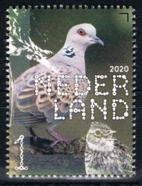 NEDERLAND VOGELS BIRDS 5/10 ++ D(B) 183