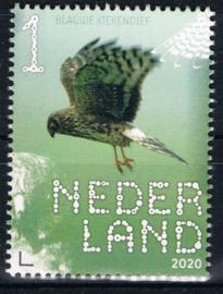 NEDERLAND VOGELS BIRDS 7/10 ++ D(B) 182