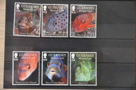 GUERNSEY VISSEN FISHES POISSONS ++ H 255