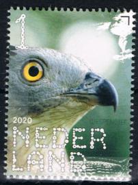 NEDERLAND VOGELS BIRDS 1/10 ++ D(B) 182