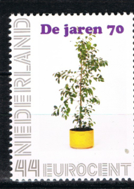 JAREN '70 FICUS BENJAMIN ++ M3 - 06