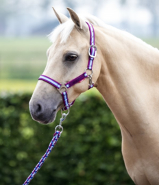 Halsterset Magical Horses