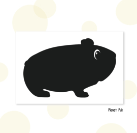 Sticker - Cavia