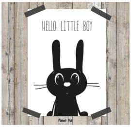 Poster/ kaart Konijn 20 x 30 cm - Hello little boy