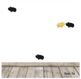 Stickersets - Cavia