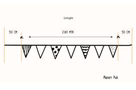 Vlaggenlijn Boefje zwart-wit-mintgroen 3.80 mtr.