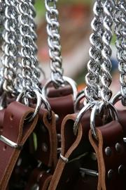 Leren halfcheck halsband XXL roodbruin (85 cm)