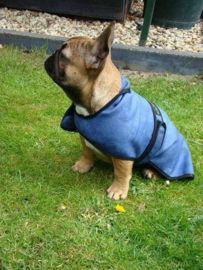 Cool-Jacket maat S - X-wide  46 cm (Franse bulldog) - Blue