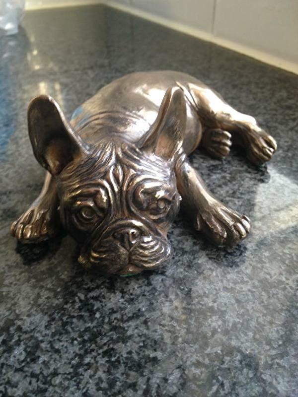 Franse bulldog puppy liggend  (verbronsed)