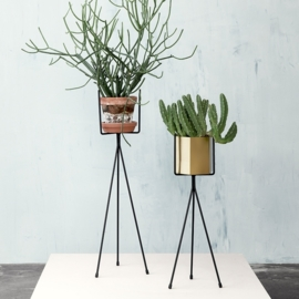 plant stand S