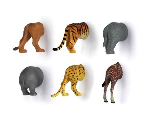 animal butt magnets