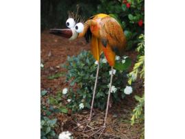 grappige kleurrijke vogel GROOT