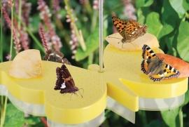 Vlinder voederschaal