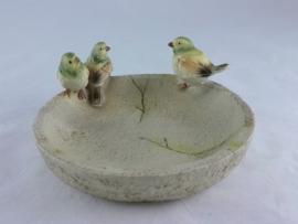 Vogeltjes op vogelbadje/ voerbakje
