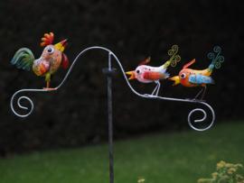Tuinsteker gekleurde kippen met haan
