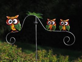Tuinsteker balans uiltjes gekleurd en mooie grote ogen