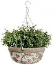 Hanging basket 'roos'