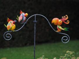 Tuinsteker gekleurde papegaai