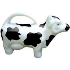 Gieter koe