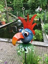 Tuinsteker vogelkop