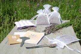 Lavendel kweek en geurset in cadeauverpakking