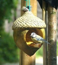 Vogelpindakaashouder kastanje