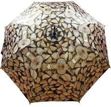 Paraplu winter openhaardhout