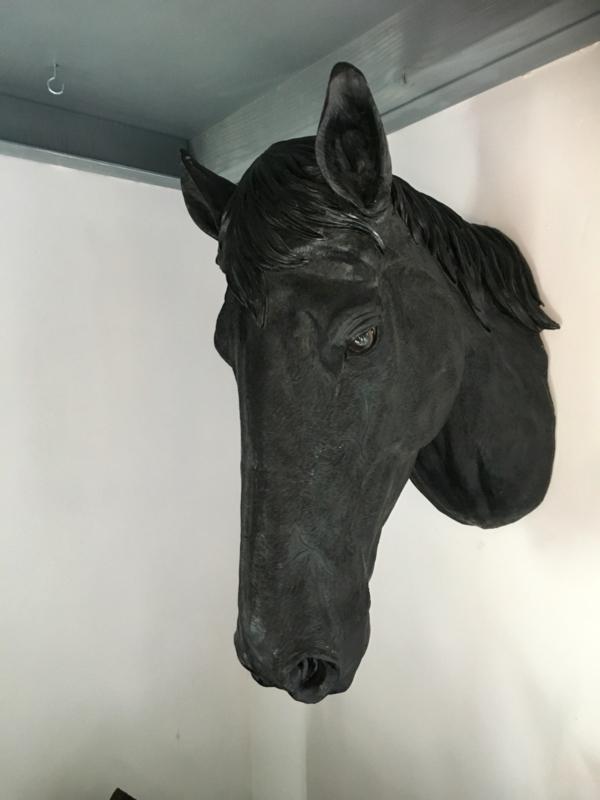 Paardenhoofd groot