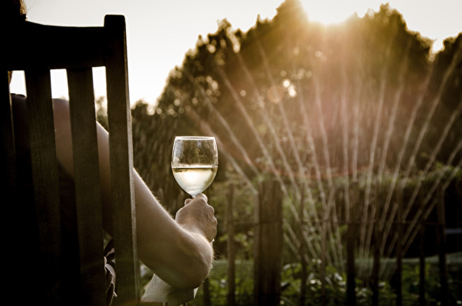 summer-wine-free-license-cc0-980x649.jpg