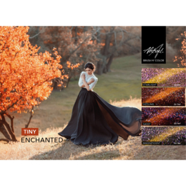 Enchanted Collection | Abstract TINY