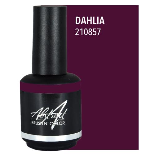 Dahlia | 210857