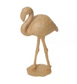 Flamingo, SA134