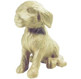 Hond, SA111