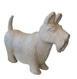 Hond, Scottie groot