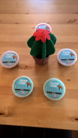 FoamClay, DIY-pakket, cactus HD039