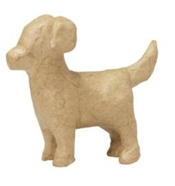 Hond, AP183