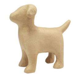Hond, SA205