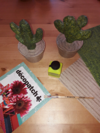 Cactus pakket HD045 en HD047