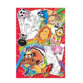 Kleurboekje met stickertjes