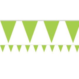 Vlaggenlijn groen 4,5 meter