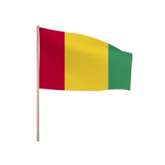 Zwaaivlaggetjes GUINEE