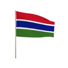 Zwaaivlaggetjes Gambia