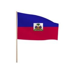 Zwaaivlaggetjes HAITI