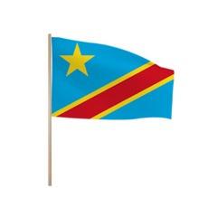 Zwaaivlaggetjes Congo