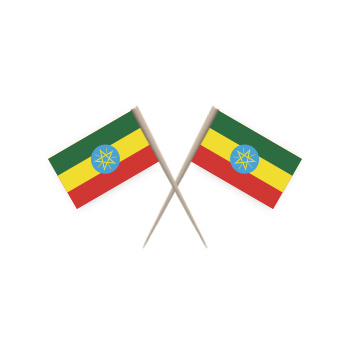 Cocktailprikkers ETHIOPIE