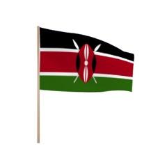 Zwaaivlaggetjes KENIA